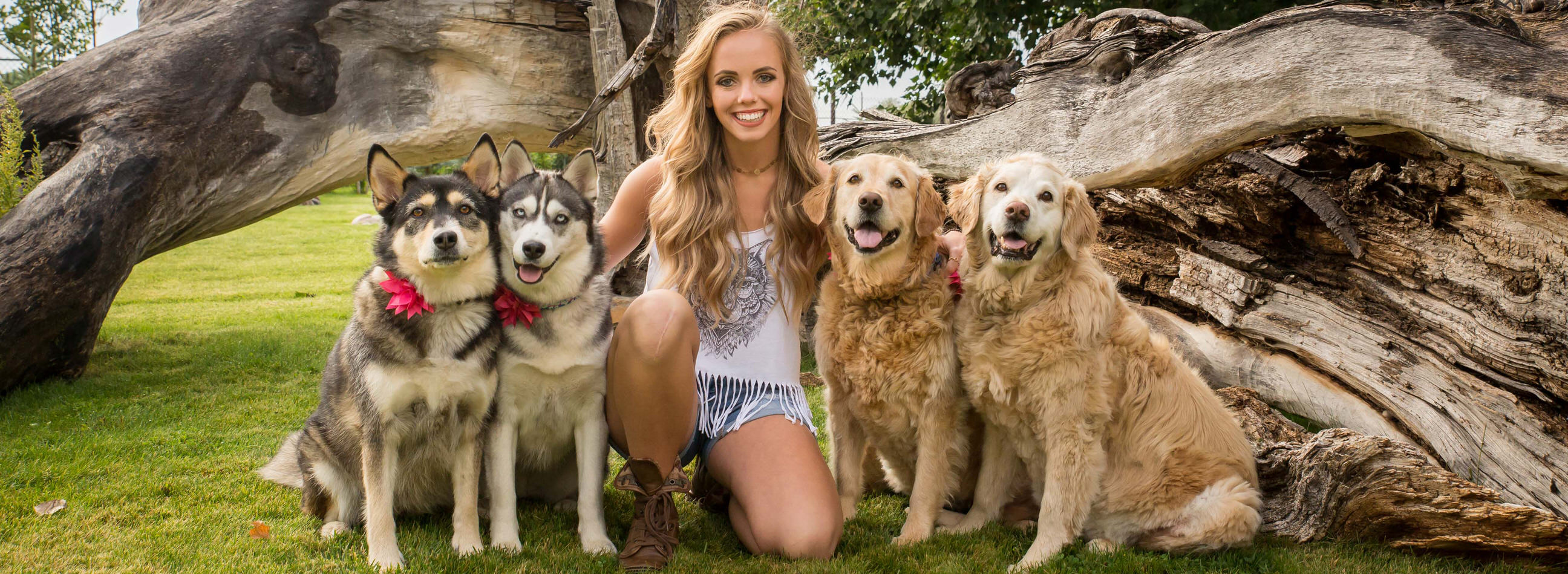Tayler testimonial, portrait with four dogs