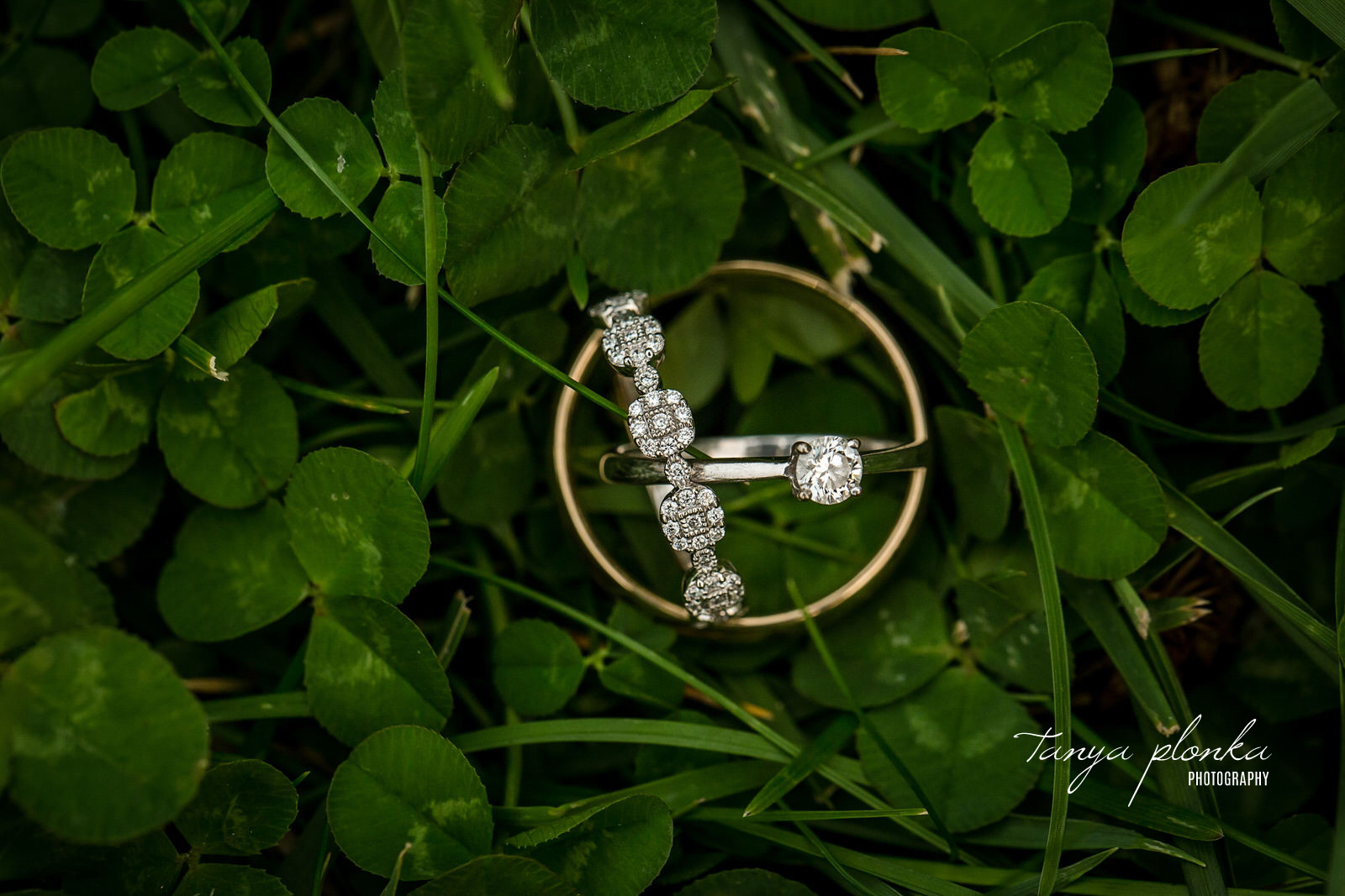 Bride's wedding rings are placed inside groom's wedding band and sit on green clover